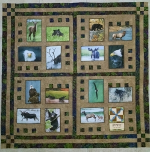 Pieced by Pat L., quilted by RM 2017