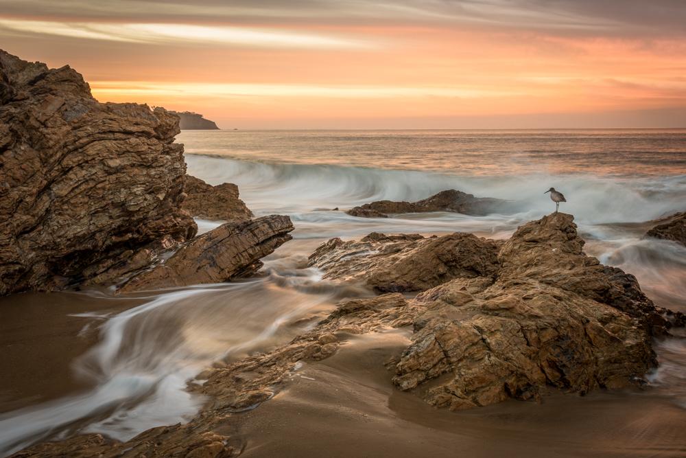 Coast at Dawn.JPG