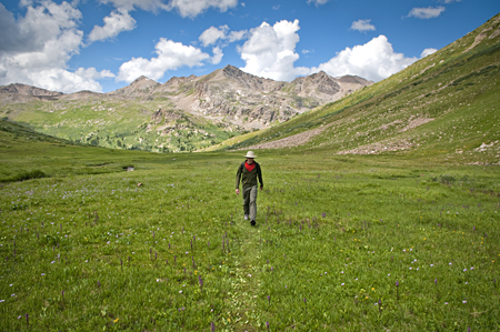 Ahh! Summertime in the Rockies. Hiking in the North Fork of Lake Creek Basin, Mt. Massive Wilderness, Colorado.