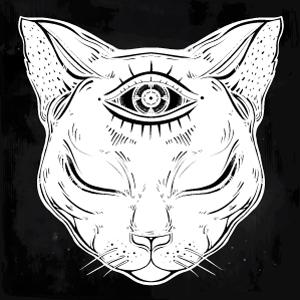 cat01_final.jpg