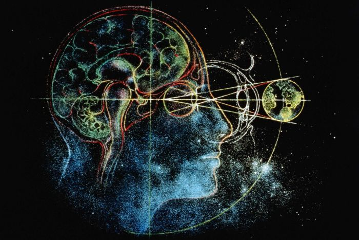 Image :  David Eagleman believes the brain functions like a 'neural parliament'. (Getty Images)