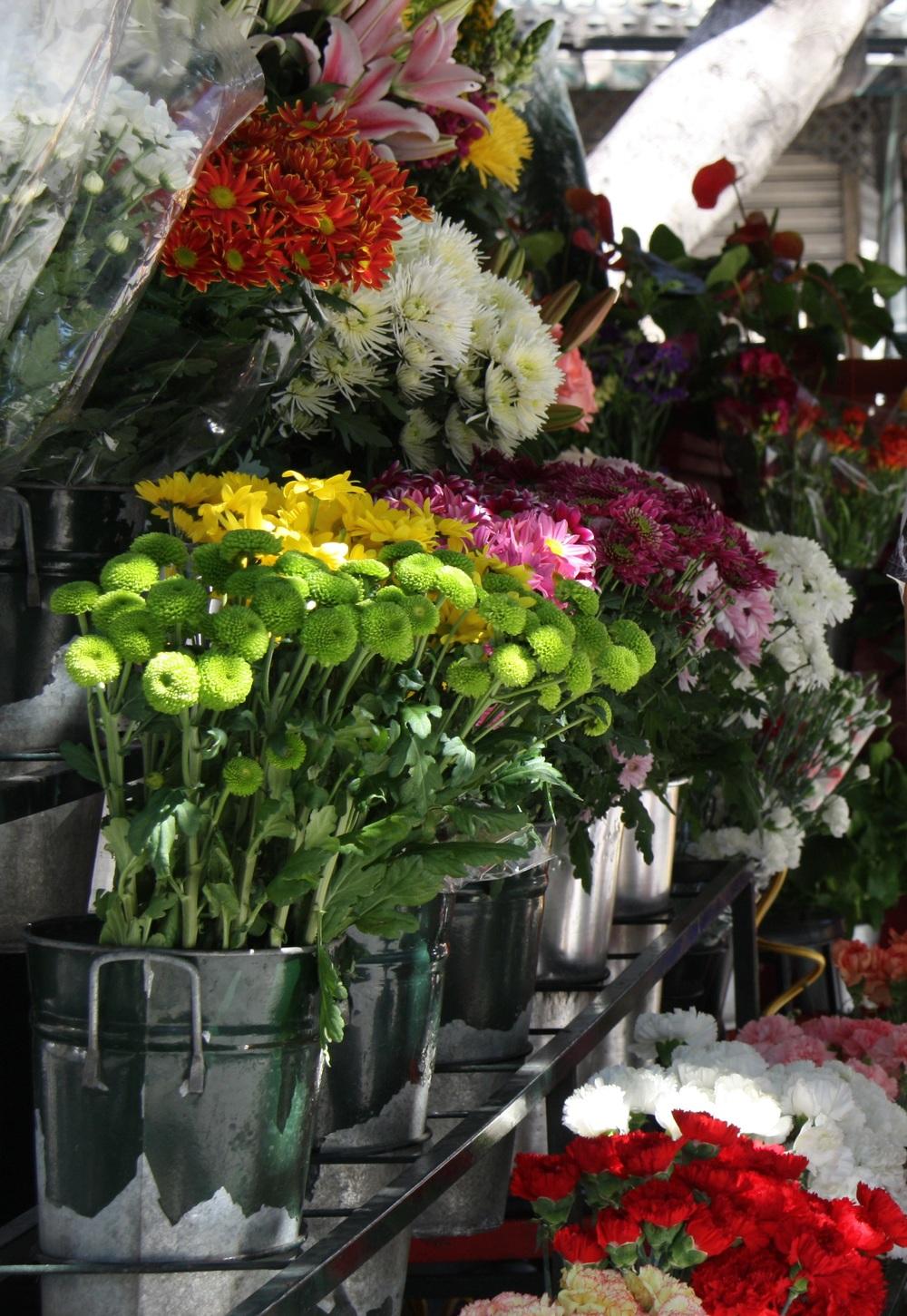 Gabriela merino Blog flowers