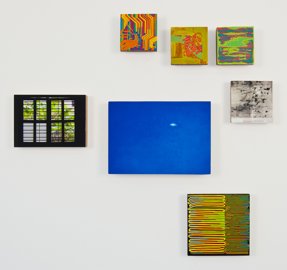 Stalin's Microbes  , 2010,   oil and archival inkjet prints on 6 panels   dimensions variable