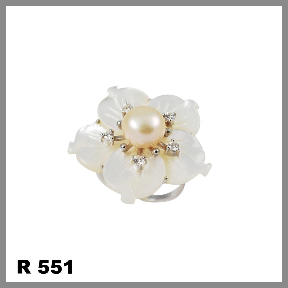 R551.jpg