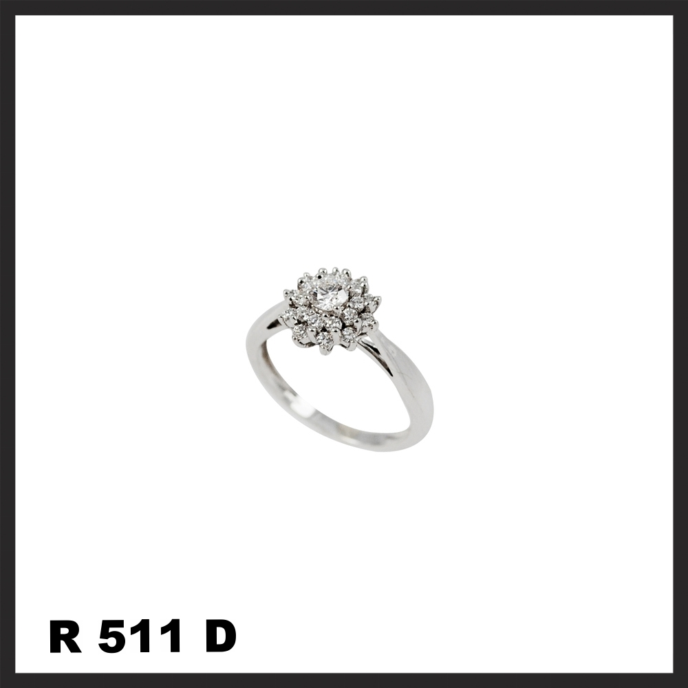 R511D.jpg