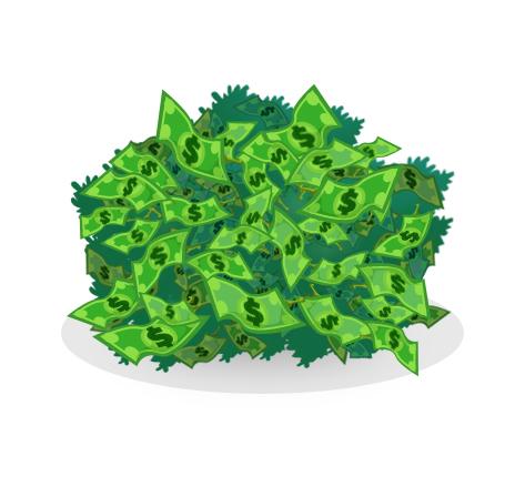 MoneyTreeShrub.jpg