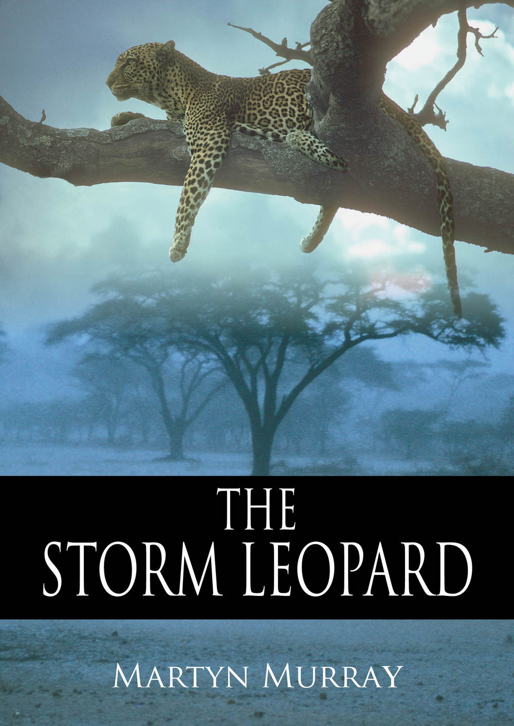 The Storm Leopard.jpg