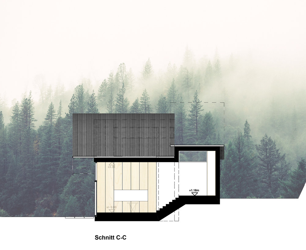 micro house _ Schnitt CC.jpg