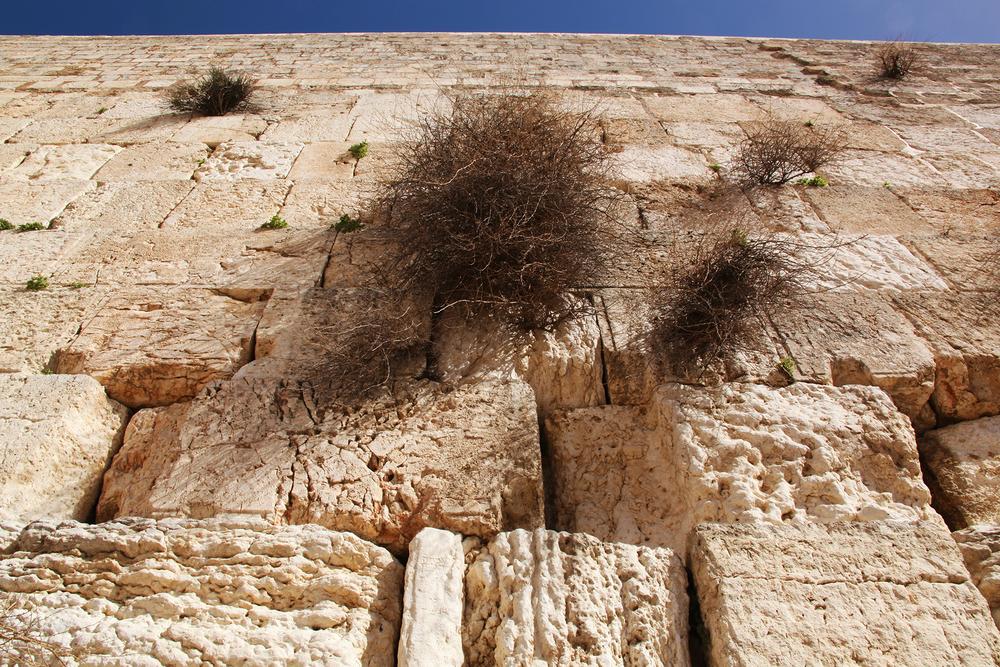 Western Wall, Israel.jpg