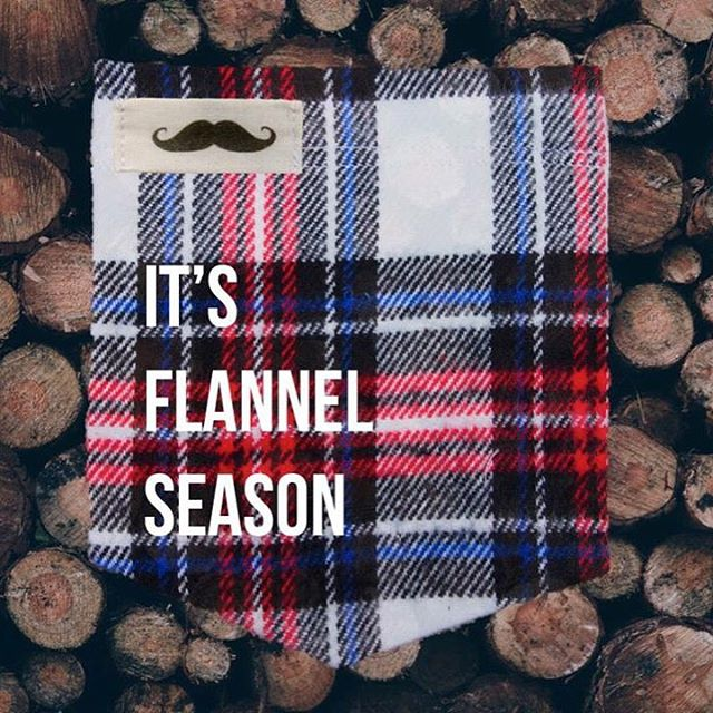 Our flannel pockets are finally here! Check them out at www.campusstache.com. #StacheOn #FlannelSeason #Flannel #SmallBusiness #ShopLocal #MadeOfFabric #MadeInUSA #Nashville #October #HandCrafted #Mustache #Pocket #Fall