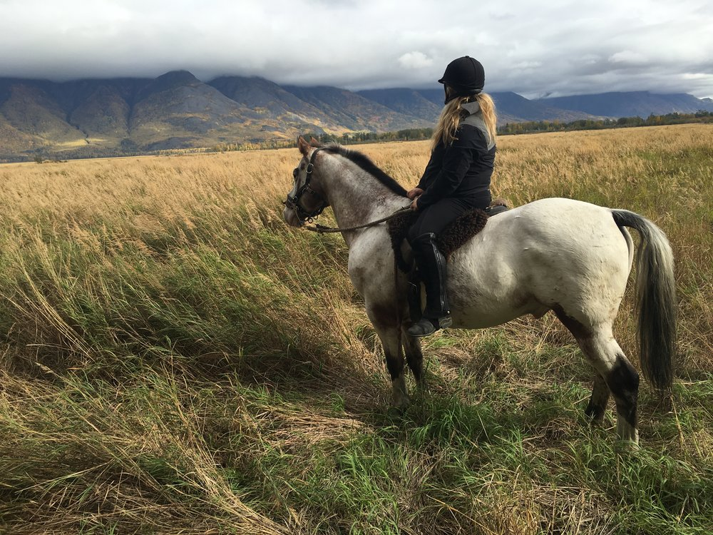 In September 2016 I visited Alaska's beautiful back country on horseback.