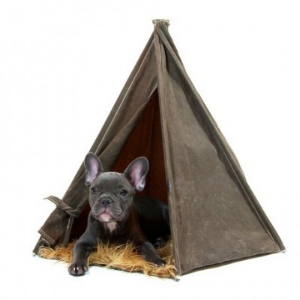 Wags and Walks_Earth Day_Olive Pet Tent