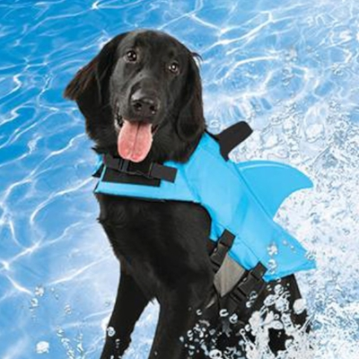 Wags and Walks_Summer Products_Shark Life Vest