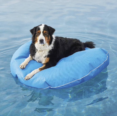 Wags and Walks_Summer Products_Dog Pool Float