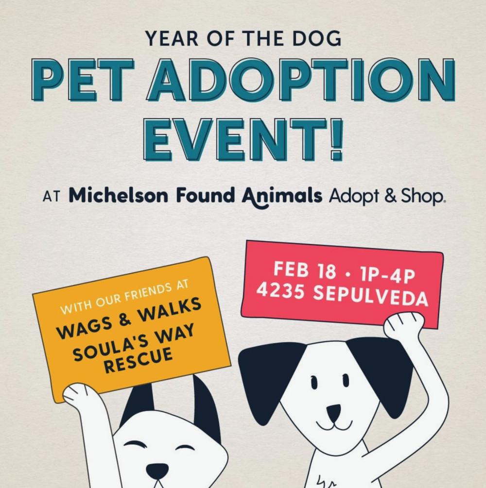 adopt&shop.jpg