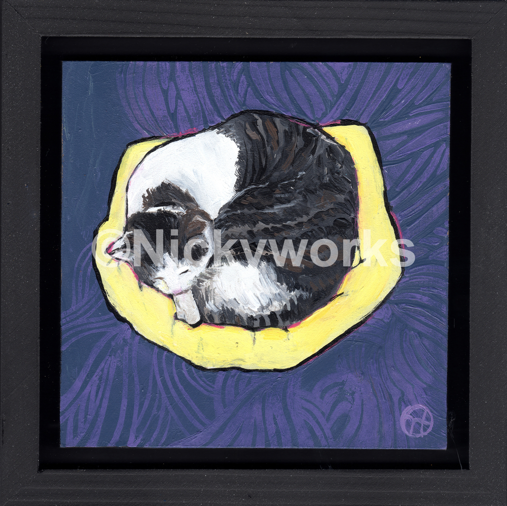 Cat on Yellow Pillow