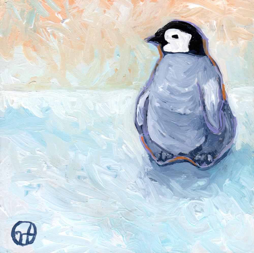 Baby Penguin Ponders