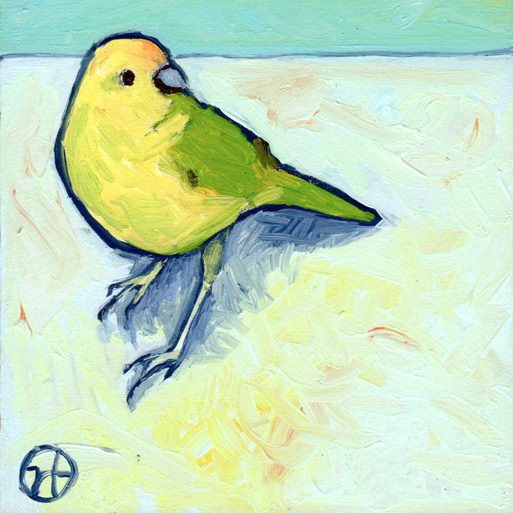 Yellow Bird of Como Zoo (Saint Paul)