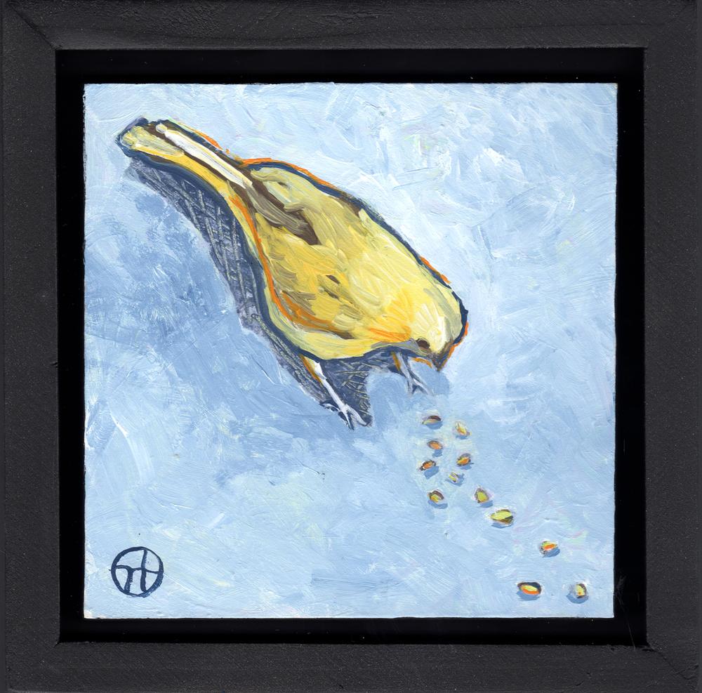Como Zoo Bird Eating Lunch