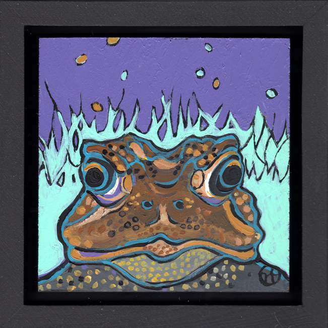 American Toad Portrait