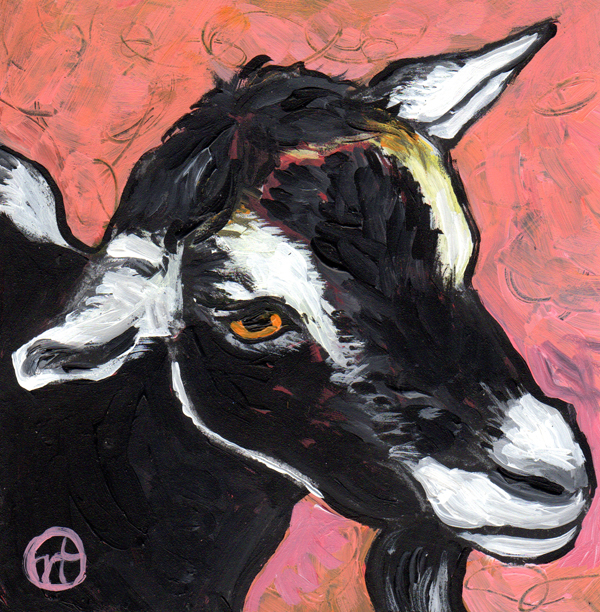 Untitled goat with pink background