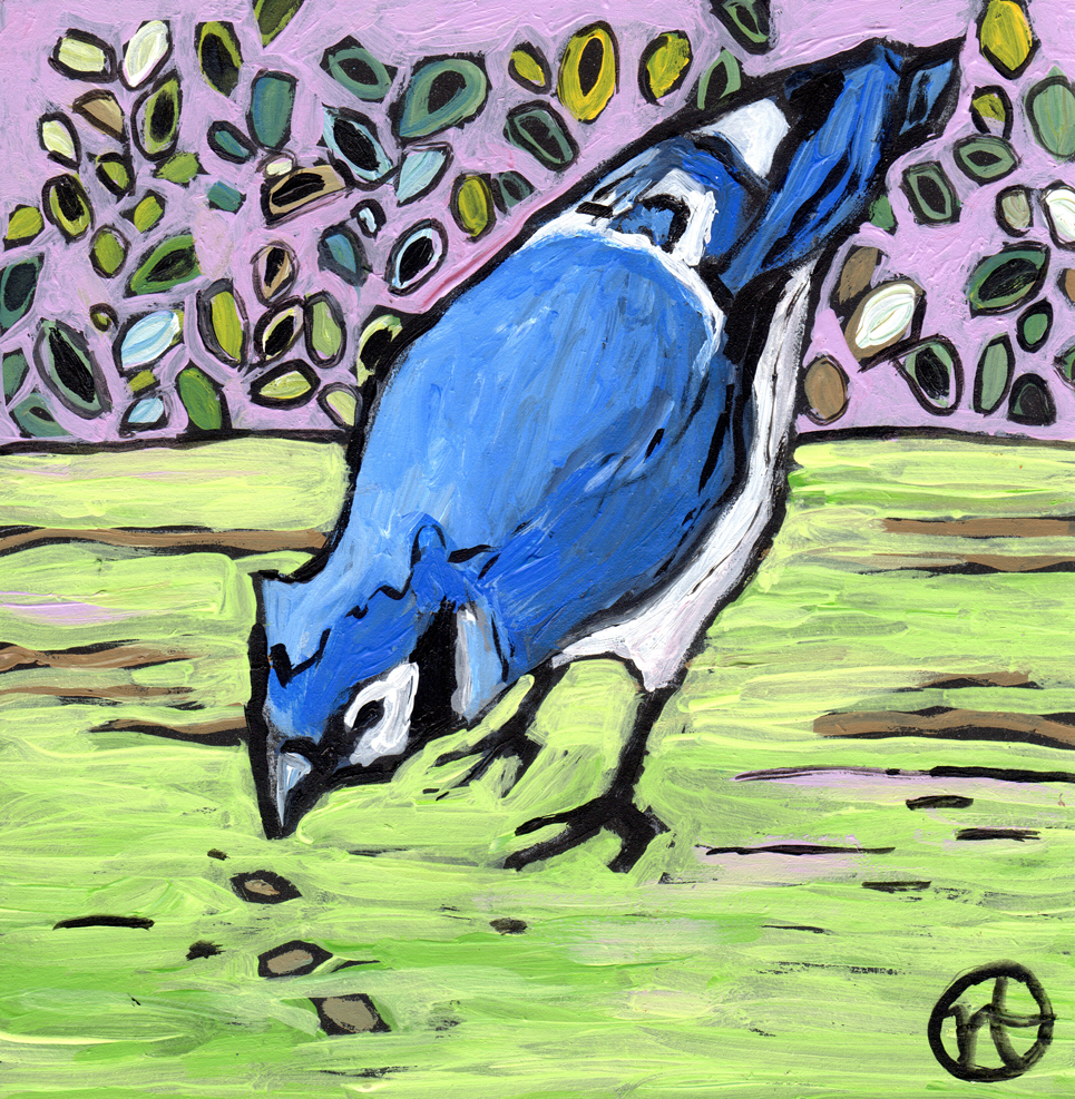 Untitled Blue Jay