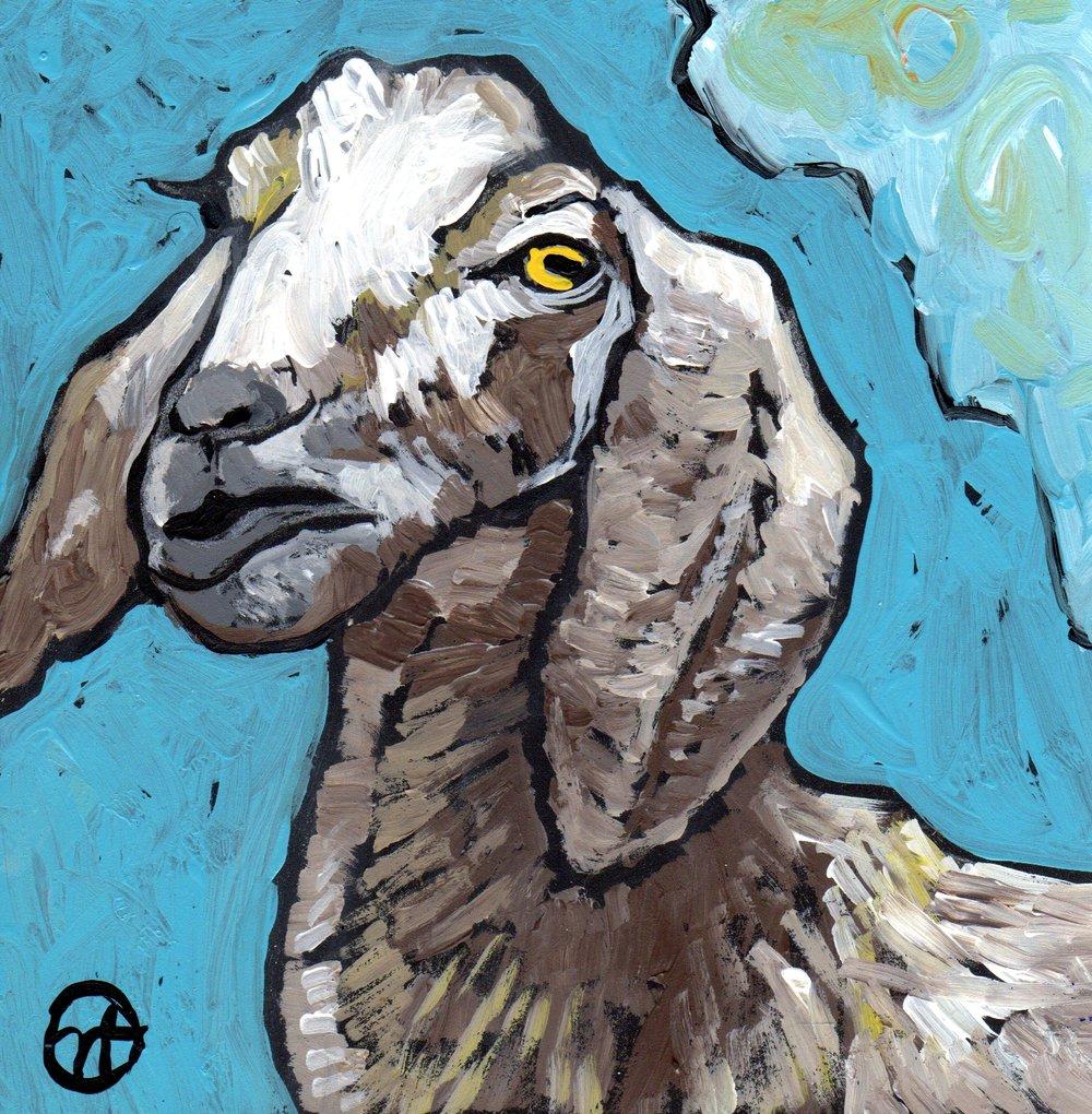 Disgruntled Goat