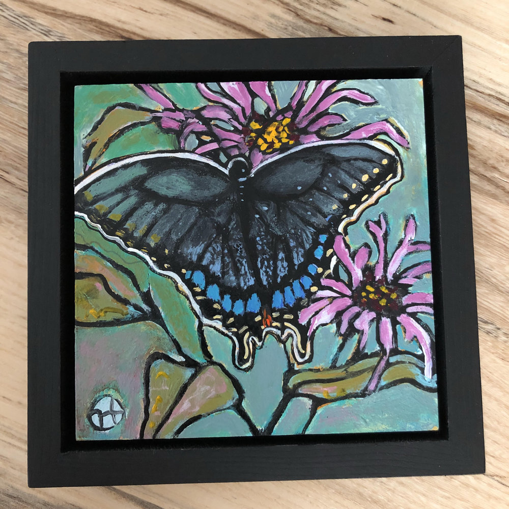Sold.  A black swallowtail sampling some bee balm.  acrylic on wood  6.5 x 6.5 inches, 1.5 inch deep wood frame
