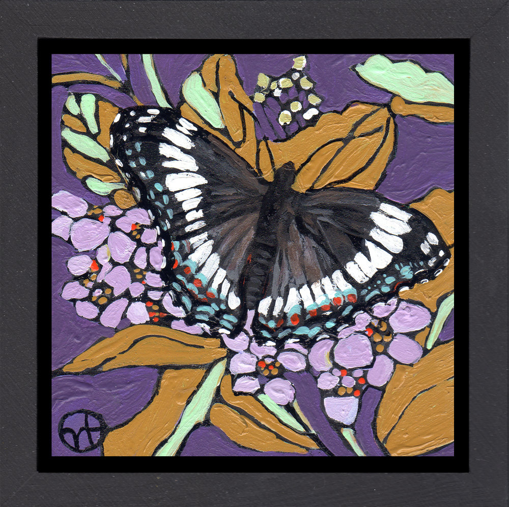 Sold.  Day 22:  A white admiral  acrylic on wood  6.5 x 6.5 inches, 1.5 inch deep wood frame