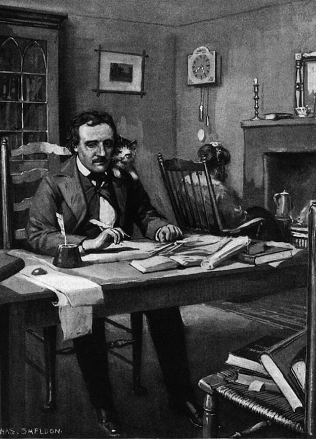 "tales-of-the-night-whisperer :      Edgar Allan Poe had a beloved pet cat named Catterina. The affectionate feline would climb up and roost on Poe's shoulders while he wrote. She would remain there, observed a visitor, ""purring as if in complacent approval of the work proceeding under [her] supervision."""
