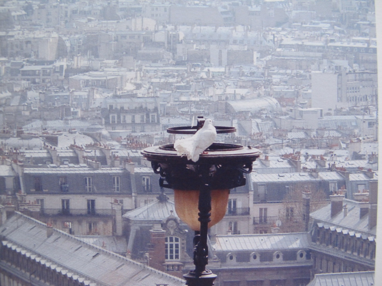 One of my favorite pic …..Paris, je t'aime!