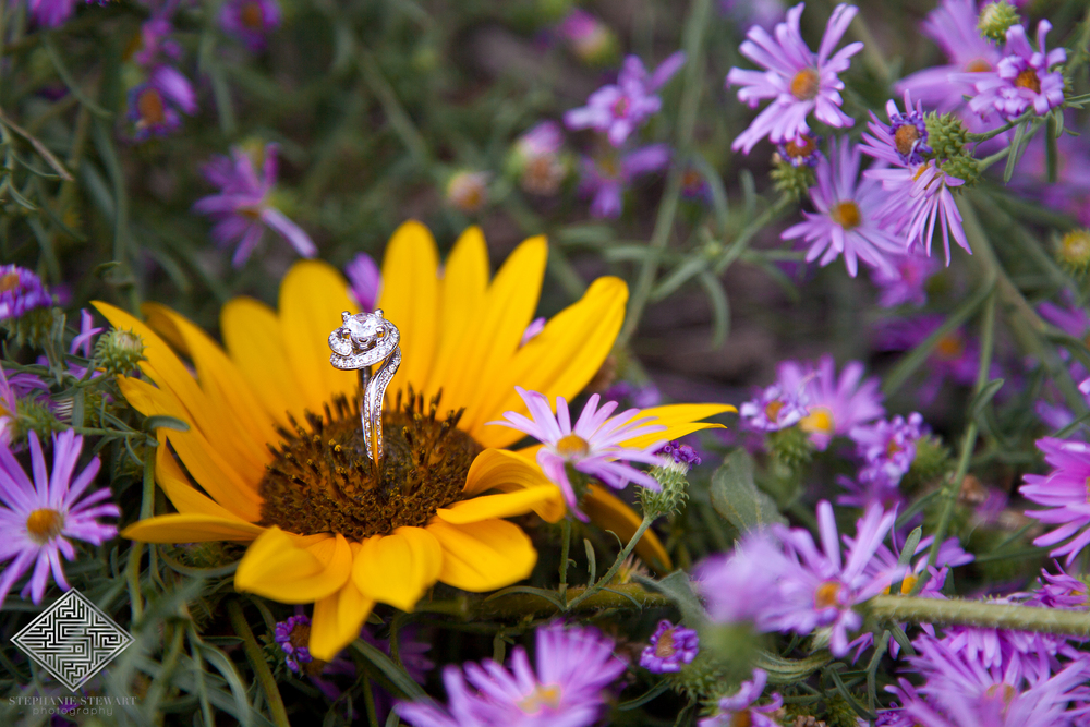 Wedding-ring-Diamond-Outdoor-Bosque-Boudoir-Bridal-The-Diamond-Supplier-Stephanie-Stewart-Photography