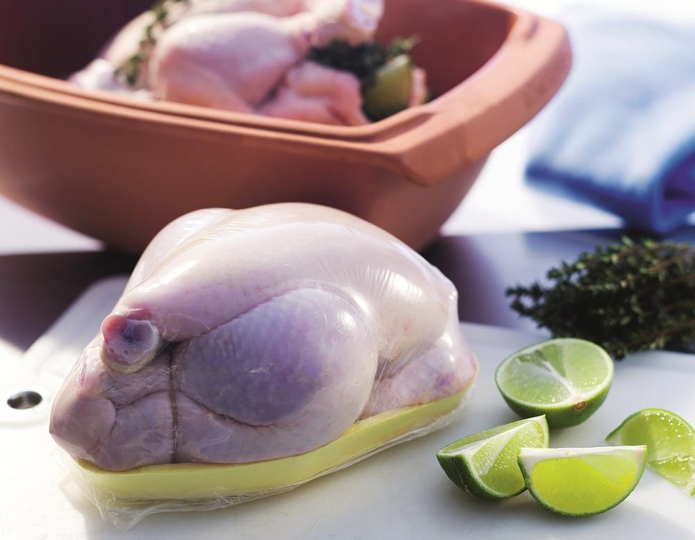 Poultry, 2 copy.jpg