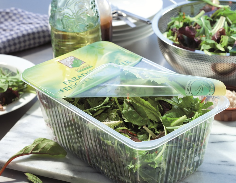 Salads, 2 copy.jpg