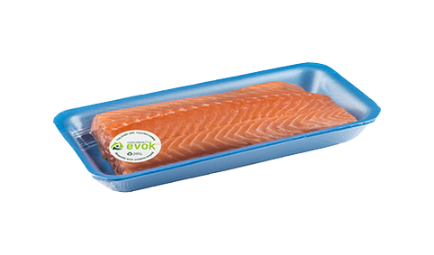 Tray-Overwrap-Blue-Fish_trans.png