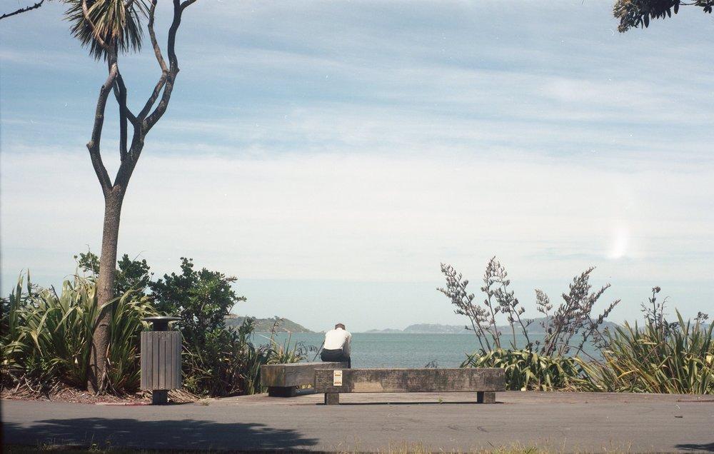 NZ013.jpg
