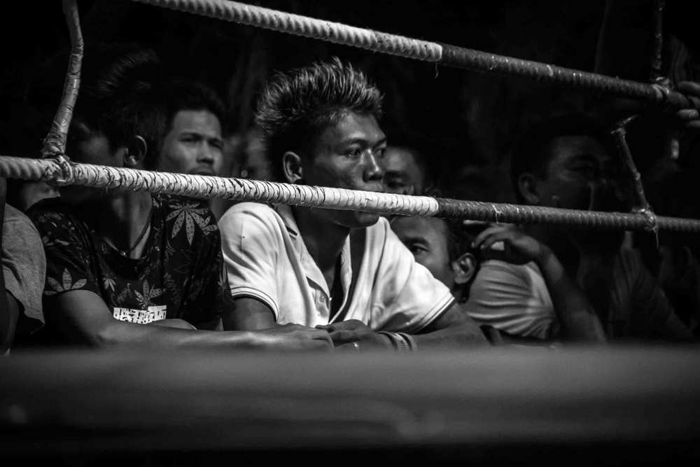 Muay Thai V