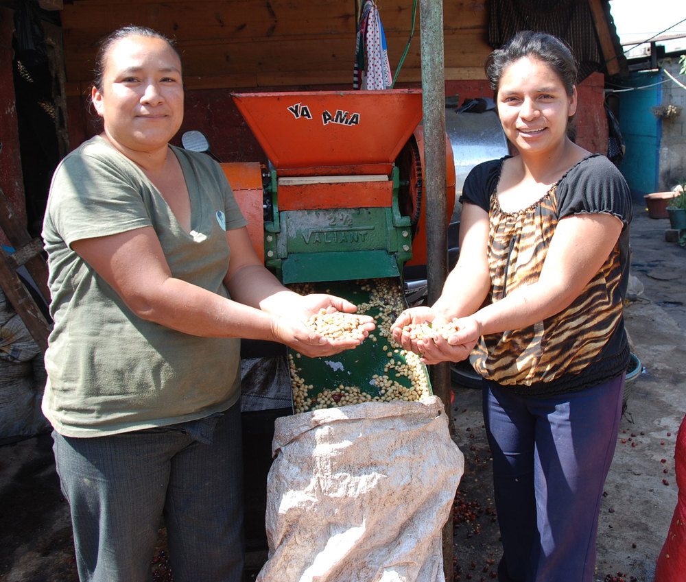 Virgilia and Lesbia showing the processed coffee beans from their new pulpero.