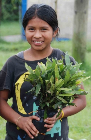 A child from one of the families in the Santa Anita cooperative accepting a macadamia tree.