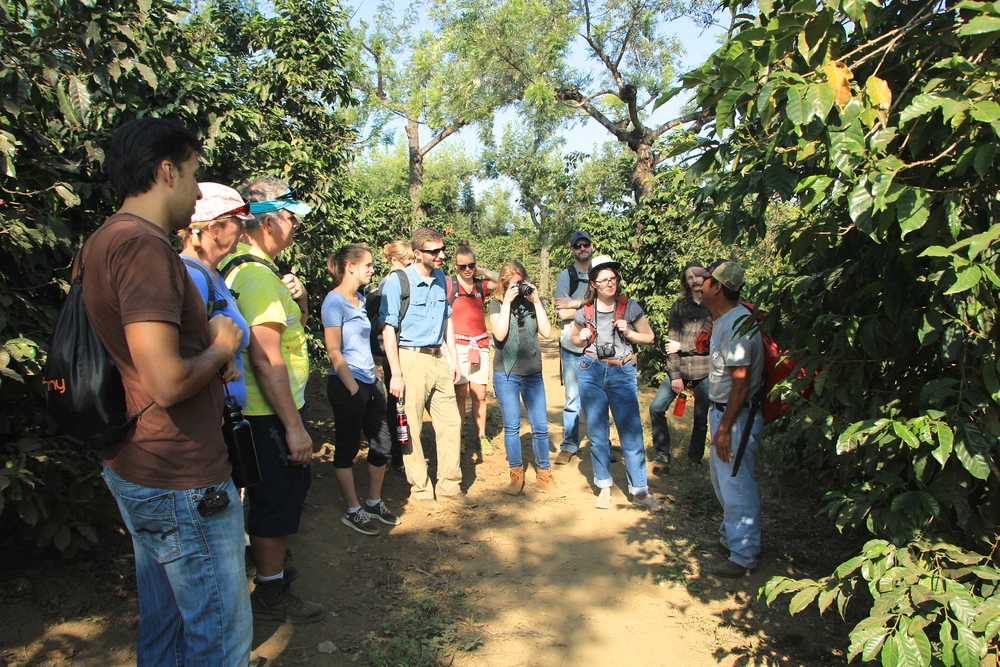 The Nossa team & friends getting to know the coffee fields with Timoteo Minas, president of the San Miguel Escobar cooperative and De la Gente's agricultural trainer