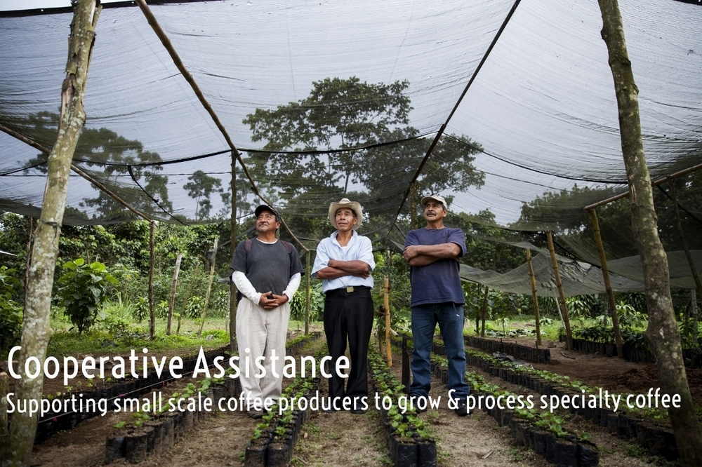 Cooperative Assistance