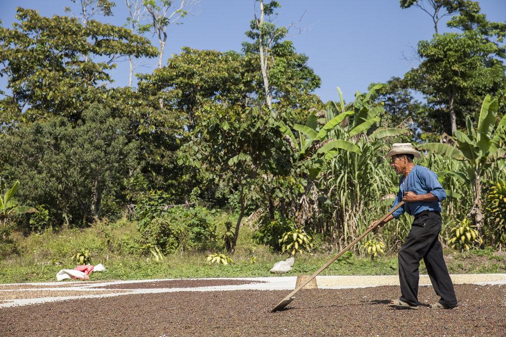 20160109_GuatemalaImmersion_261.jpg