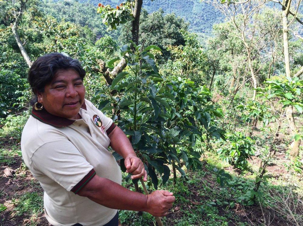 Female Coffee Farmer