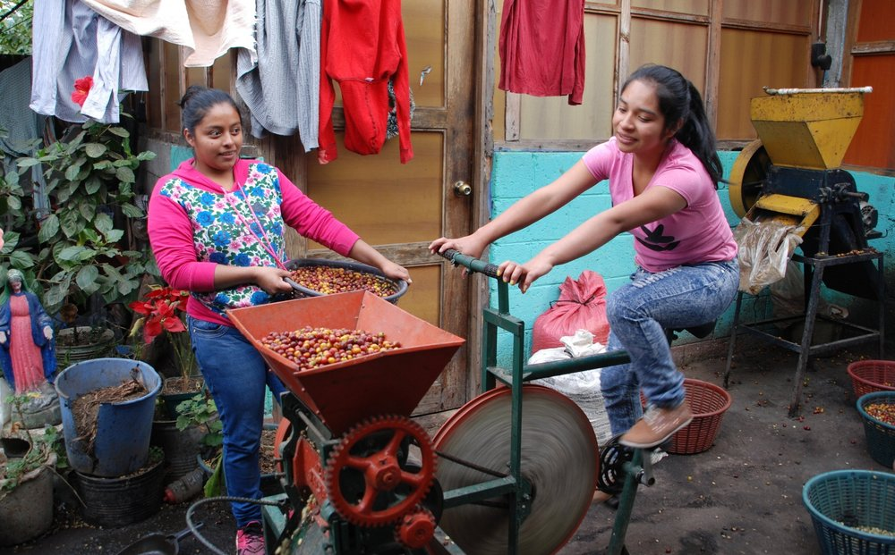 Karen, a future doctor, depulping coffee with the help of Alejandra, another member of the group