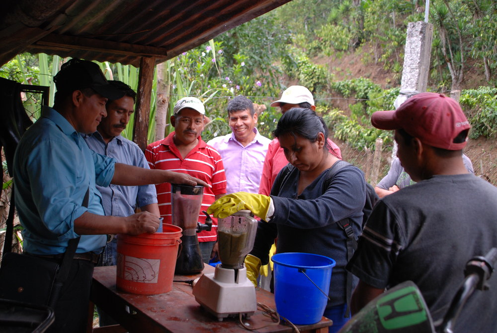 The farmers' first time using a blender, lent to us by a friendly neighbor, in order to licuadize the  extracto . This greatly helped quicken the process!