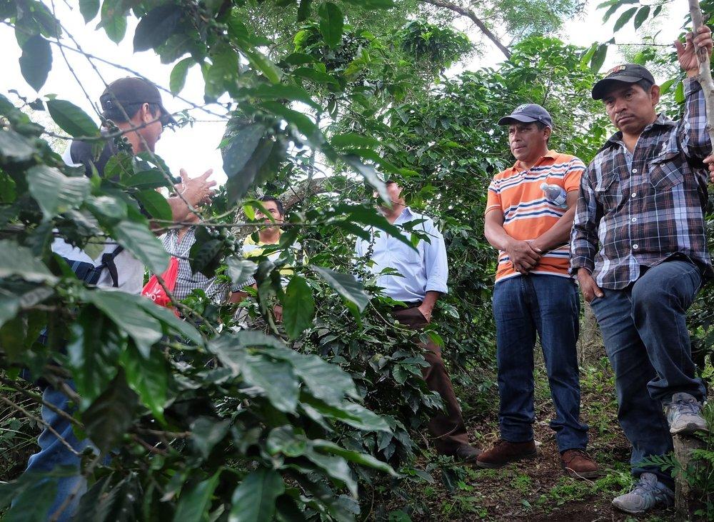 Coffee farmers on a coffee tour!