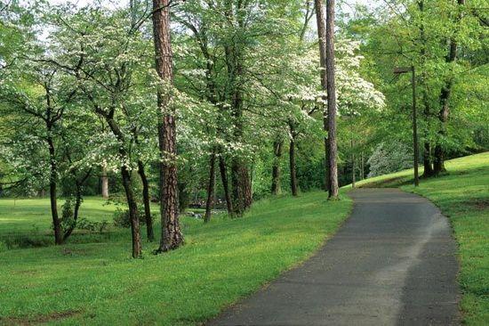 Springbrook Park