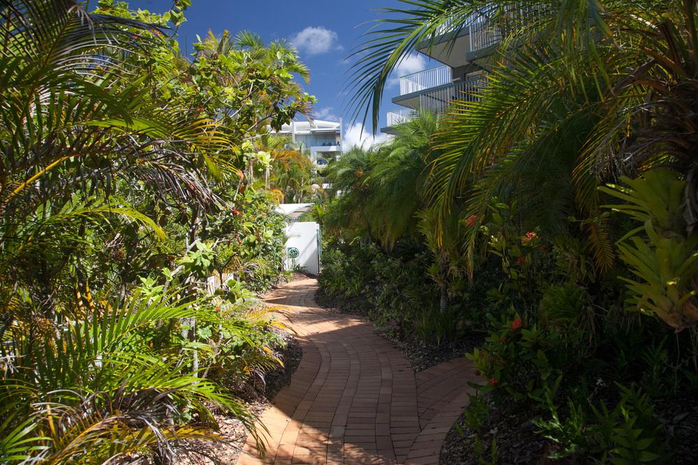Tropical_gradens