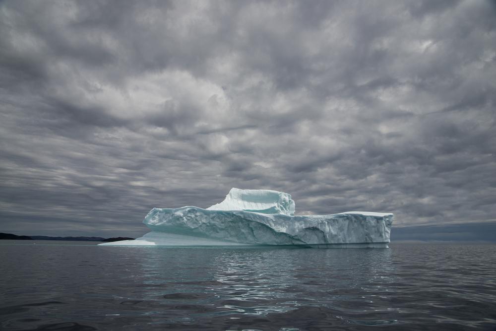 Trinity Iceberg FB.jpg