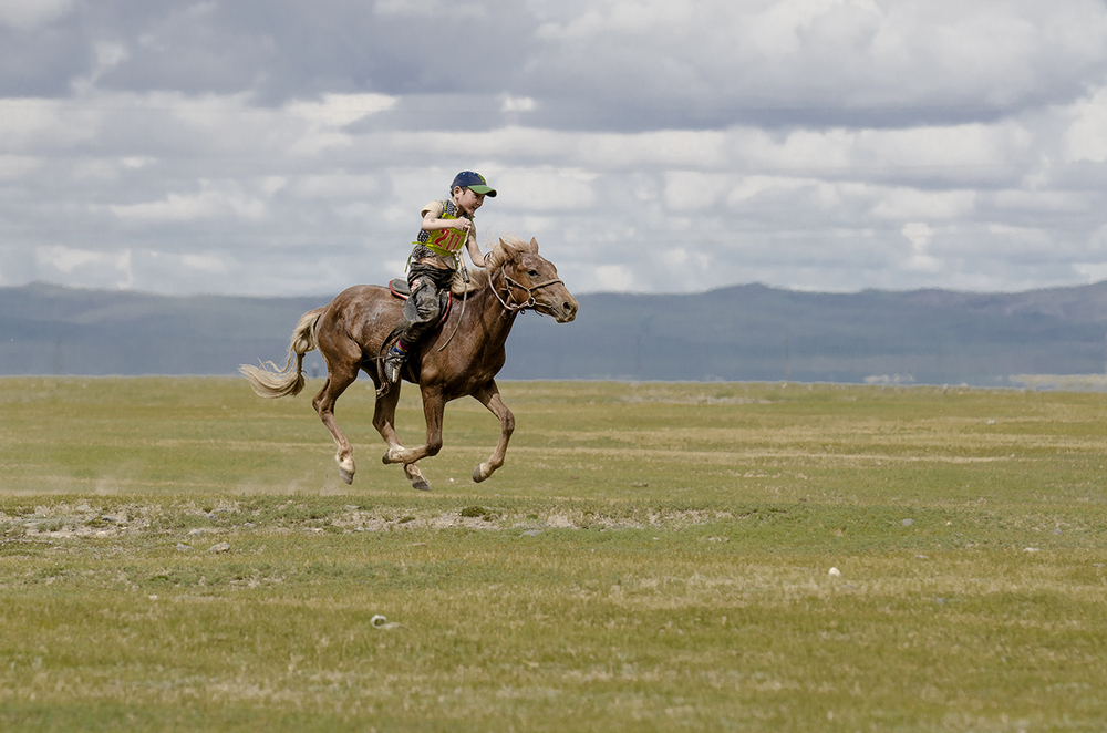 naadam horse racing.jpg